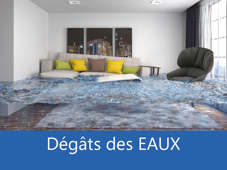 expertise humidité 35, expert humidité Rennes, cause moisissure Saint-Malo, solutions hulidité Ille-et-Vilaine,